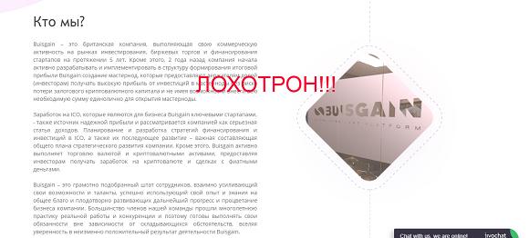 Buisgain - отзывы о компании