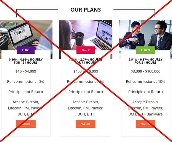 PayInHour - отзывы и обзор payinhour.com