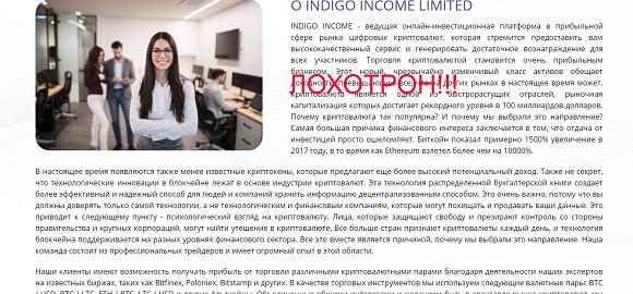 Indigo Income - обзор и отзывы об indigoincome.biz