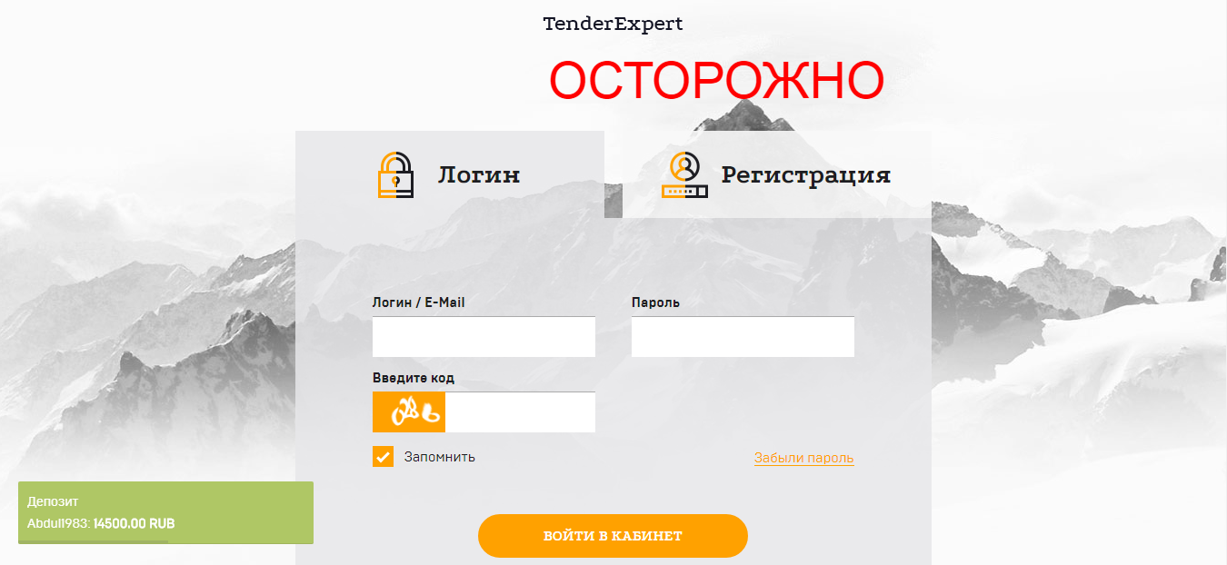 Tender Expert - отзывы об инвестиционном проекте tender-expert.net